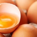 Come utilizzare tutte le parti dell'uovo compreso il guscio