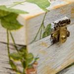 Decorazioni per la vostra casa attraverso l'arte del decoupage