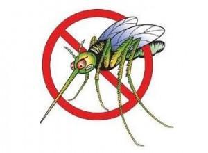 combattere le zanzare