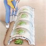 Come costruire una serra ad arco per le piante