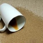 Rimedi ecologici per pulire i tappeti
